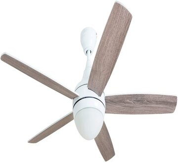 Prominence Home 80094-01 Ashby Ceiling Fan